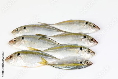 Valokuva  Raw fresh small yellow striped tervally banded slender fish