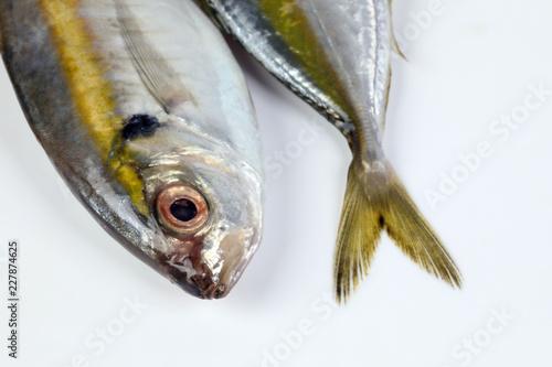 Valokuva  Raw fresh small yellow striped tervally banded slender fish