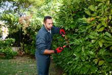 Handsome Young Man Gardener Trimming Hedgerow In A Garden Park Outdoor