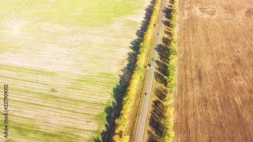 Tuinposter Luchtfoto Road in the autumn forest aerial view
