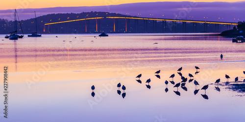 Obraz na plátne A morning at Cornelian Bay
