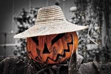 Smile, Mr. Pumpkin - It's Halloween!