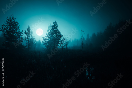 Garden Poster Green blue Night mysterious landscape in cold tones - silhouettes of the forest trees under the full moon and dramatic night sky.