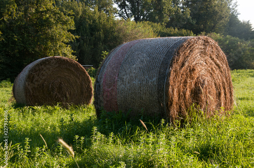 Valokuva  Pagliaio su un campo verde in Italia
