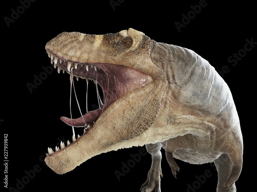 Photo  3d rendered illustration of a T-rex on black background