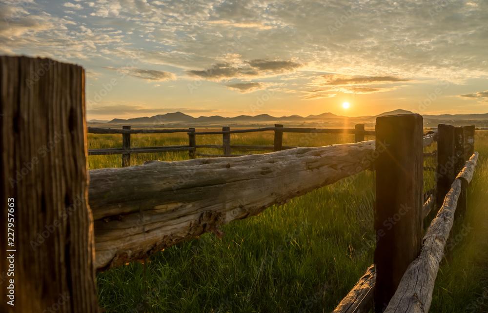 Fototapety, obrazy: Fence at Sunrise
