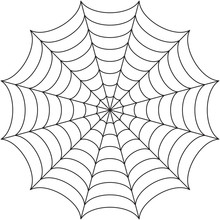 Rounded Spider Web Isolated On White.
