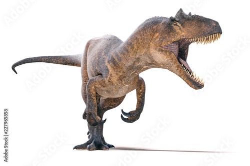 3d Allosaurus render on white background Wallpaper Mural