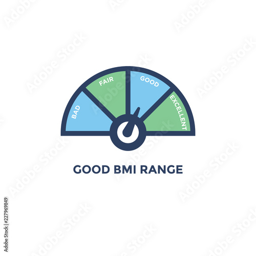 Bmi Body Mass Index Icon With With Bmi Range Chart Green And