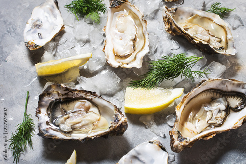 Opened Oysters with lemon on gray concrete texture background