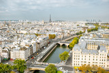 Fototapeta Wieża Eiffla - Aerial panoramic view of Paris from the Notre-Dame cathedral during the morning light in France