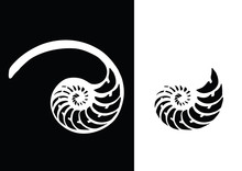 Black And White Nautilus Shell Striped Tri Cut. Vector Illustration.