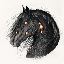 Horse Zombie