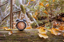 Vintage Black Alarm Clock On Autumn Leaves. Time Change Abstract Photo.