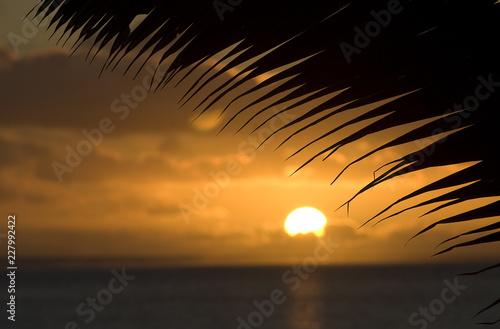 Fotografie, Obraz  Tropical sunset in Cook Islands