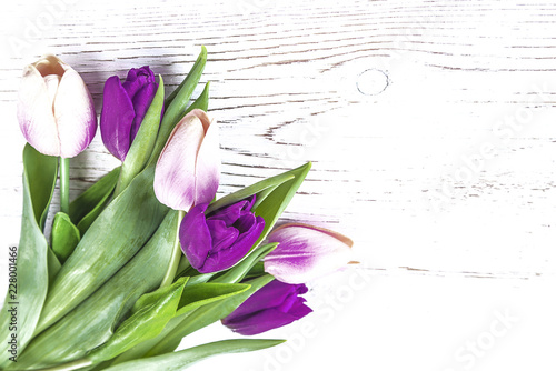 bouquet of white and purple tulips on white wooden background