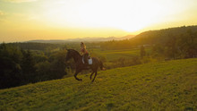 AERIAL: Carefree Caucasian Girl Gallops On Her Brown Horse On Summer Evening