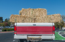 A Red & White Pickup Truck Is Carrying Three Bales Of Hay In The Bed Of The Truck. Two Bales Are Over Hanging The Right And Left Side Of The Truck. A Blue Sky, Trees, And Traffic Are In The Background