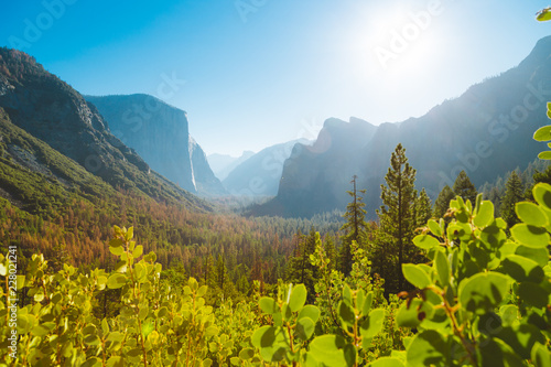 Fototapeten Bekannte Orte in Amerika Yosemite National Park at sunrise, California, USA