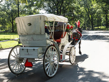 Horse Drawn Carriage Inn Centr...