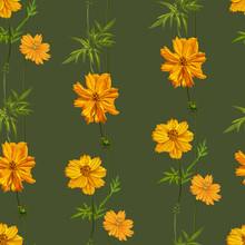 Yellow Cosmos Flowers Seamless Pattern