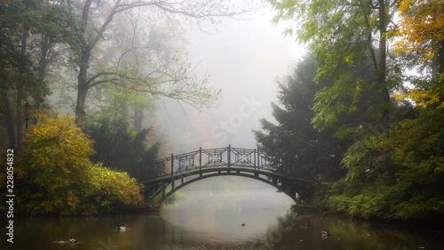 sceniczny-widok-mglisty-jesien-krajobraz-z-pieknym-starym-mostem-w-ogrodzie-z