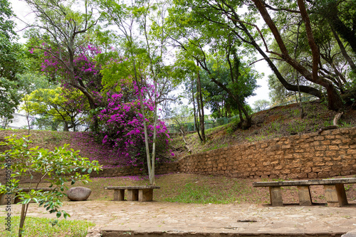 Fotografie, Obraz  parque