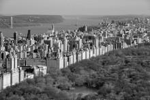 New York Central Park Grey Black White