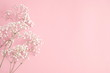 Small white flowers on pastel pink background. Happy Women's Day, Wedding, Mother's Day, Easter, Valentine's Day. Flat lay, top view, copy space