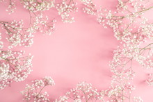 Frame Made Of Small White Flowers On Pastel Pink Background. Happy Women's Day, Wedding, Mother's Day, Easter, Valentine's Day. Flat Lay, Top View, Copy Space