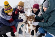 Portrait Of Two Young Couples Having Fun In Winter Outdoors Playing With Husky Dogs And Smiling Happily
