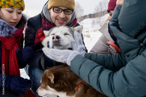 Fotografía  Group of  young people petting gorgeous husky dog outdoors in winter, focus on j