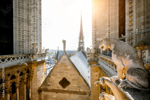 Keuken foto achterwand Historisch geb. Notre-Dame cathedral on the top with gargoyle sculptures in Paris