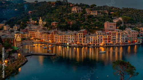 Fotografering The Christmas Tree in Portofino