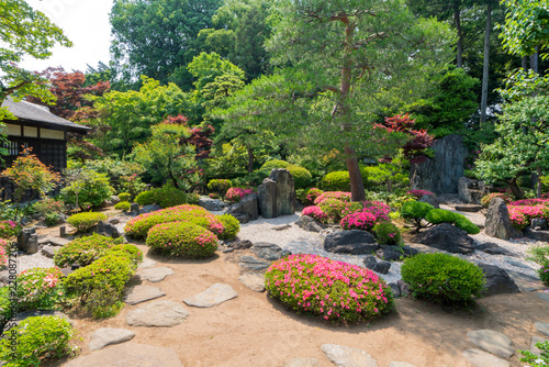 Spoed Fotobehang Tuin landscape of Beautiful garden with colorful flowers on hill