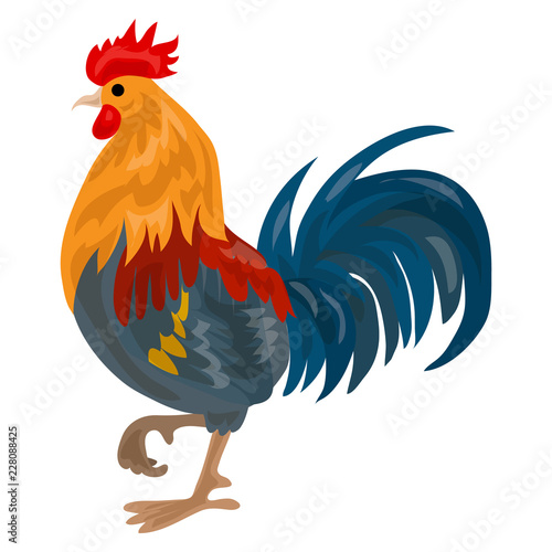 Photo Farm cock icon