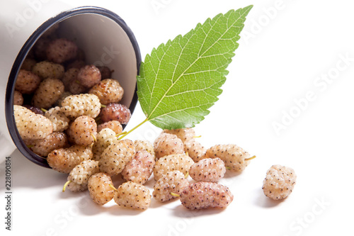 White cup with white mulberry fruit and leaf isolated on white.