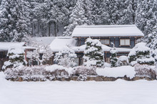 Landscape Of House And Trees In Snow With Wintry Frosty Day
