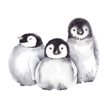 Cute Baby Penguin Family. Wate...