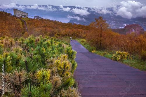 Deurstickers Asia land autumn season leaves color change in showa-shinzan vulcano hokkaido japan
