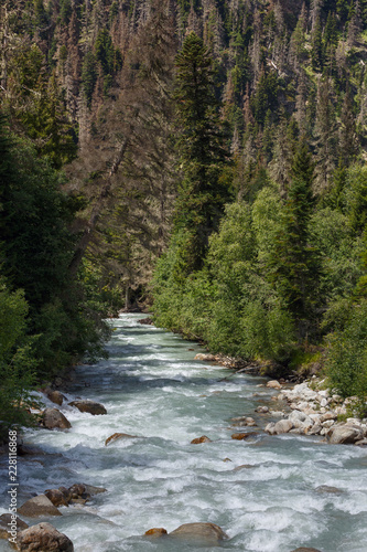 Mountain river with a rapid flow in the Caucasus Range.