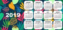 2019 Colorful Calendar.