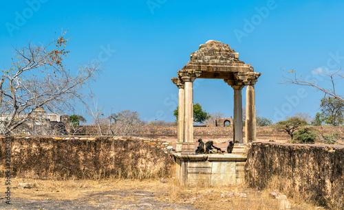 Deurstickers Asia land Fortifications at Rani Padmini Palace at Chittorgarh Fort. Rajasthan, India