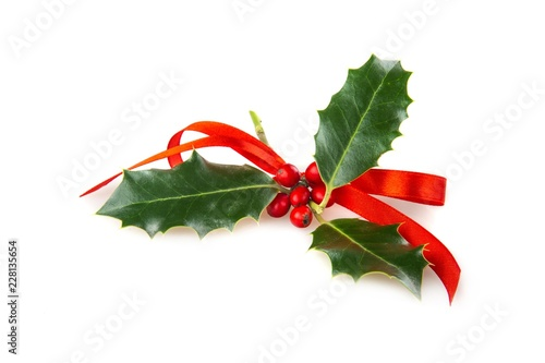 Christmas Holly with Red Ribbon
