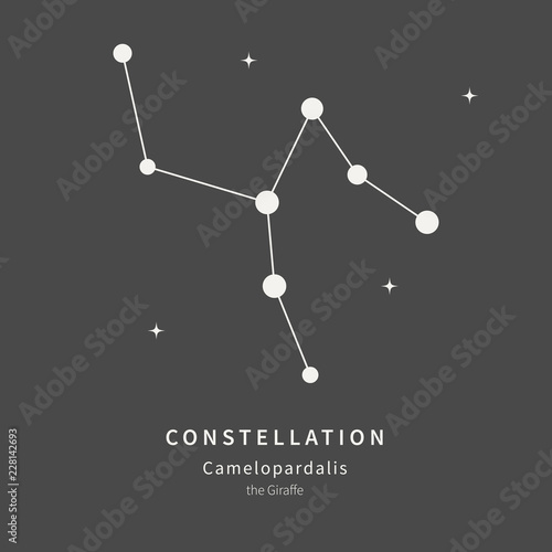 The Constellation Of Camelopardalis. The Giraffe - linear icon. Vector illustration of the concept of astronomy.