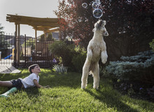 Happy Boy With Dog Jumping For Soap Bubbles At Park