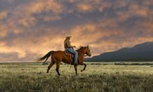 Man Riding Horse At Field, Bue...