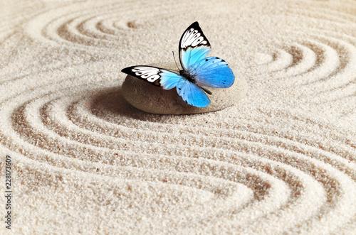 Keuken foto achterwand Stenen in het Zand Sand, blue butterfly and spa stone in zen garden. Spa concept.