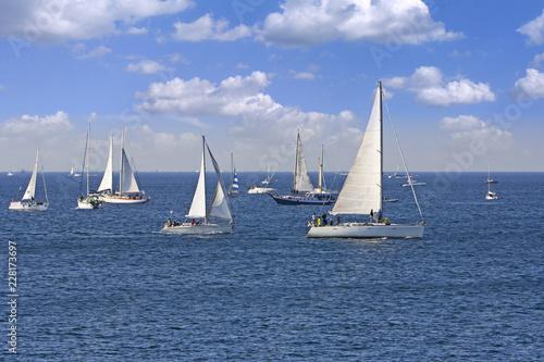 Obraz na plátně One oft Biggest sail boat regata in the world, Barcolana, Trieste regatta
