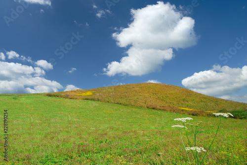Landscape, view of green rolling fields
